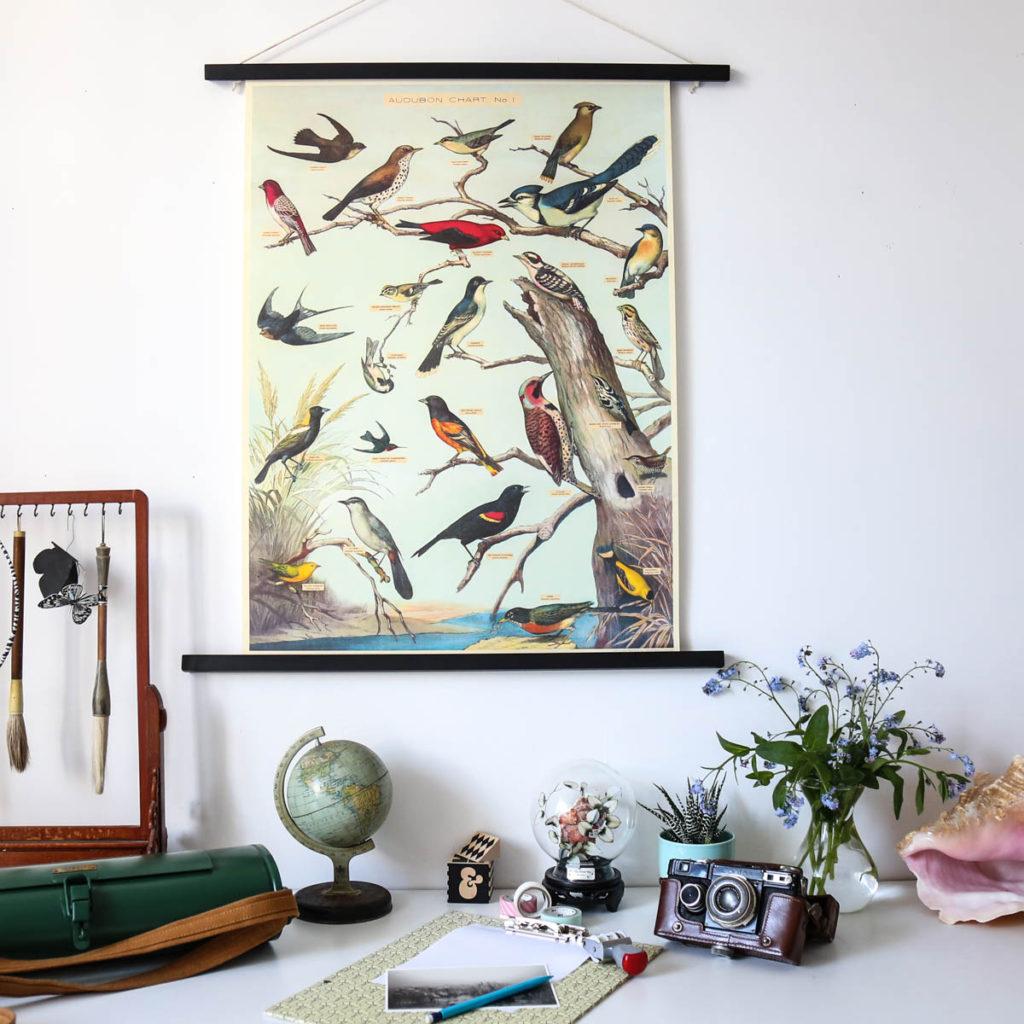 affiche oiseaux audubon